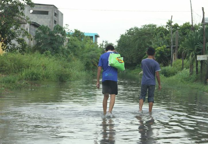 Los trabajos de mantenimiento de la red pluvial es responsabilidad del Ayuntamiento. (Carlos Horta/ SIPSE)