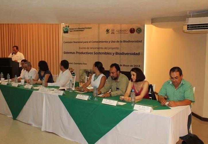 Diferentes instancias de los tres niveles de gobierno anunciaron el lanzamiento del programa temporal. (Edgardo Rodríguez/SIPSE)