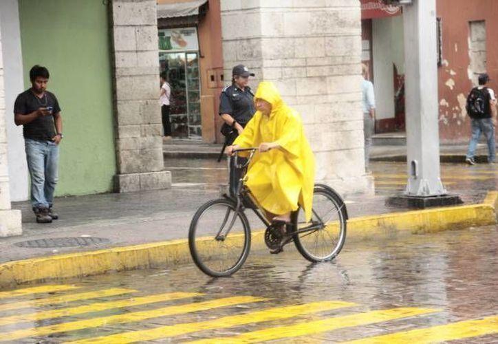 De acuerdo al Servicio Metereológico de Nacional hay un potencial de lluvias muy fuertes en Veracruz, Tabasco,  Campeche, Yucatán y Quintana Roo. (SIPSE)