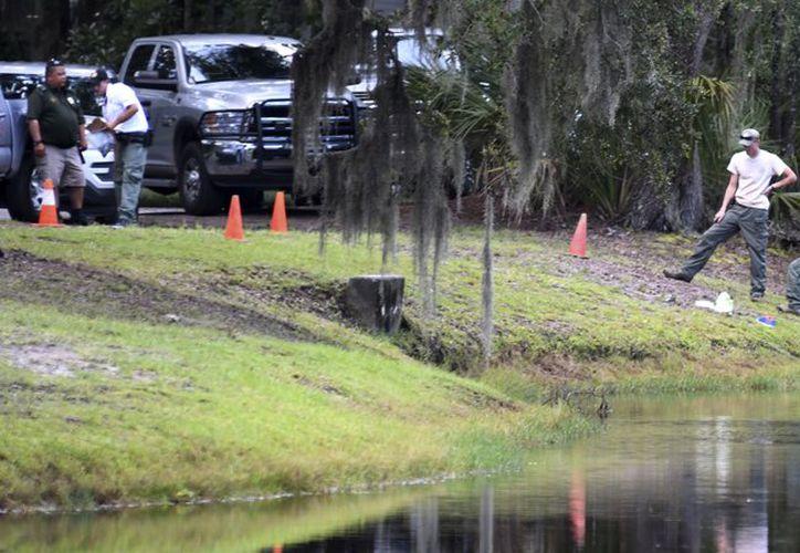 De acuerdo a las autoridades, Cassandra Cline fue arrastrada por un caimán hacia una laguna. (AP)