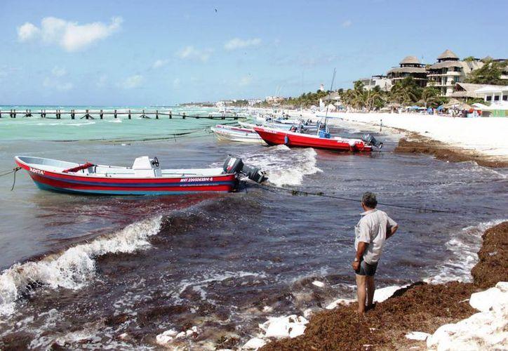 Los esfuerzos por retirar y enterrar esos desechos marinos no son suficientes. (Adrián Barreto/SIPSE)