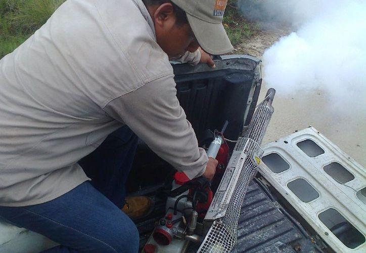 El personal del área de vectores realiza las fumigaciones. (Gloria Poot/SIPSE)