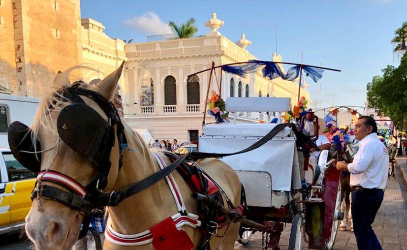 Sustituir calesas tiradas por caballos en pro del cuidado animal, propone Víctor Caballero. (Milenio Novedades)