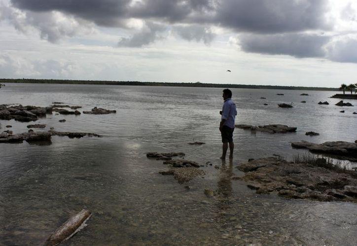 Exigen respetar veda y piden que la pesca de caracol rosado sea permitida a pescadores reglamentados. (Enrique Mena/SIPSE)