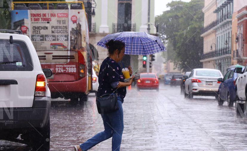 Recomiendan a la población y a los visitantes de la capital yucateca tomar sus precauciones. (Novedades Yucatán)