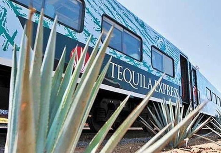 Actualmente se encuentran operando el ten chepe y dos turísticos en la zona de Tequila Jalisco. (Milenio)