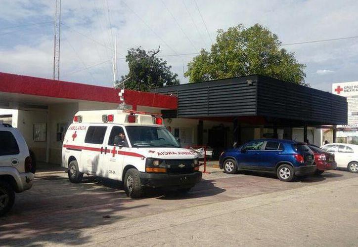 En las instalaciones, la Cruz Roja ofrece cursos de natación para niños y adultos. (Archivo)
