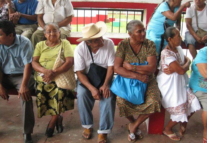 Atiende a las personas adultas mayores de 65 años en adelante. (Javier Ortiz/SIPSE)