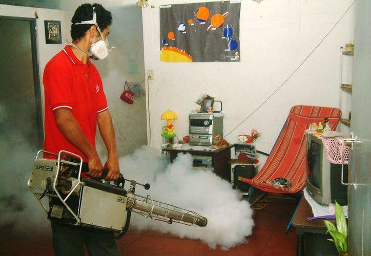 Durante el periodo vacacional de Semana Santa se desplegará un operativo sanitario en Oaxaca. (Archivo/Notimex)
