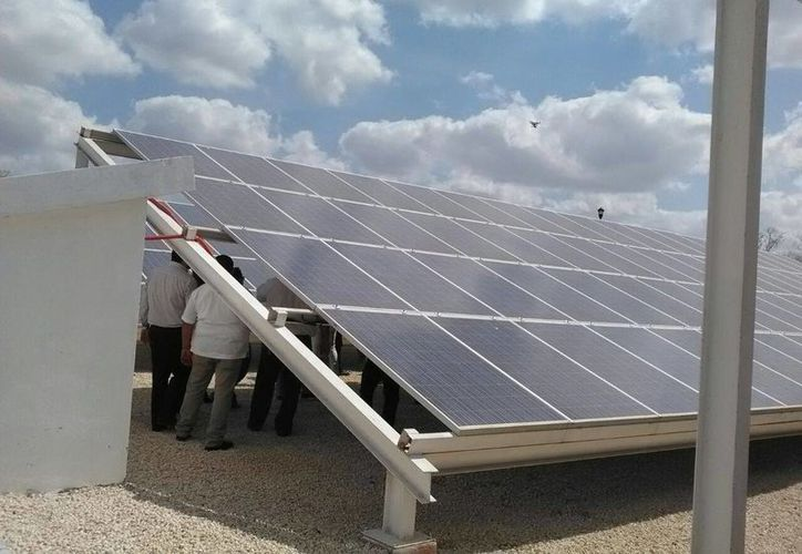 Imagen de las celdas solares que se usan en la planta de tratamientos de lodos en Mérida. (Ana Hernández/Milenio Novedades)