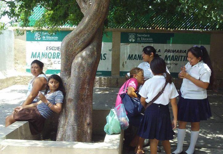 La profesora Lucía Victoria Pacheco May todavía conserva su pasión por dar clases. (SIPSE)