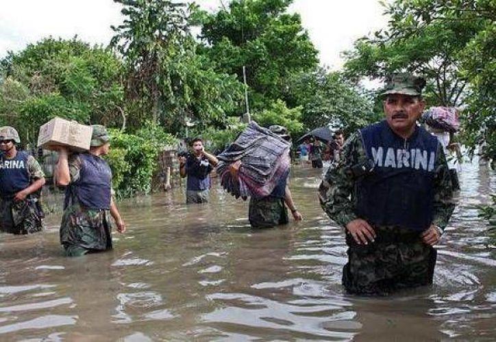 Para la Sagarpa los desastres naturales incluyen las sequías, granizadas, lluvias torrenciales, tornado, terremoto, erupción volcánica y maremoto. (Agencias/Contexto)