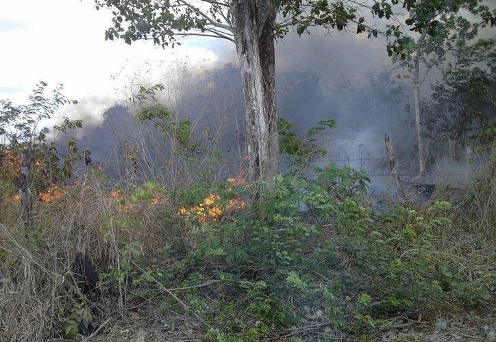 Se originó un incendio de gran magnitud, cerca del poblado de San Ángel. (Raúl Balam/SIPSE)