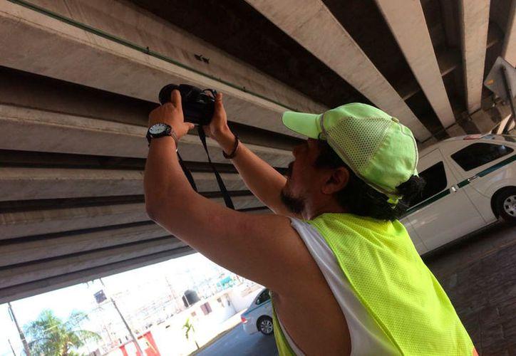 Se llevan a cabo mediciones de longitud, altura y profundidad de la primera estructura. (Daniel Pacheco/SIPSE)
