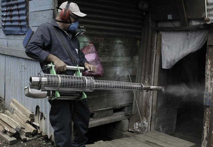 Un empleado de Salud fumiga, el 18 de julio de 2013, las casas de la ciudadela La Carpio, en San José, Costa Rica. (EFE/Archivo)