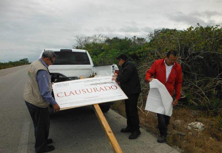 Inspectores de la Profepa colocan un letrero de clausura en predios ubicados junto a la carretera Progreso-Telchac Puerto, debido a la destrucción de especies protegidas, como el manglar. (Cortesía)