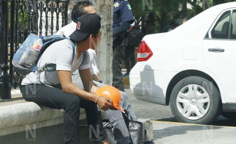 Baja tasa de desempleo en Yucatán. (José Acosta/Novedades Yucatán)