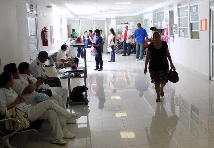 Médicos Generales y Familiares de la zona sur de Quintana Roo realizan procesos colectivos de certificación. (Ángel Castilla/SIPSE)