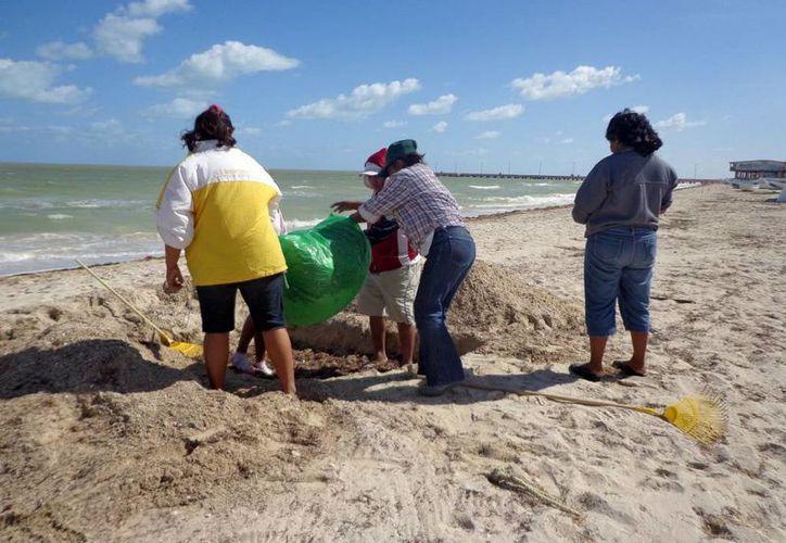 La limpieza de playas es uno de los proyectos que impulsa el colectivo Na'lu'um. (Milenio Novedades)