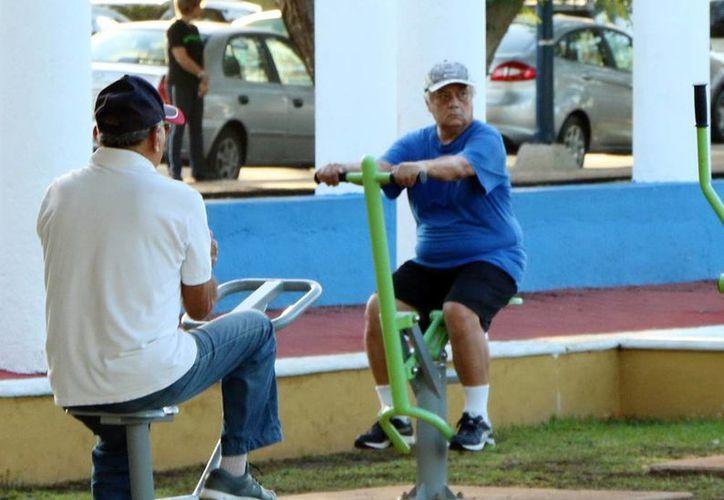 El reto de la población es lograr un envejecimiento saludable. Imagen de dos personas realizando ejercicios en un parque público. (Milenio Novedades)