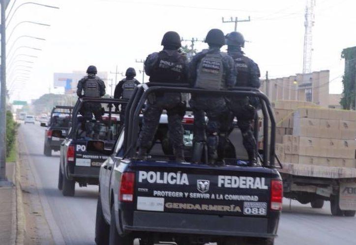 Elementos de la División de Gendarmería de la Policía Federal, realizarán un despliegue de módulos. (Redacción/SIPSE)