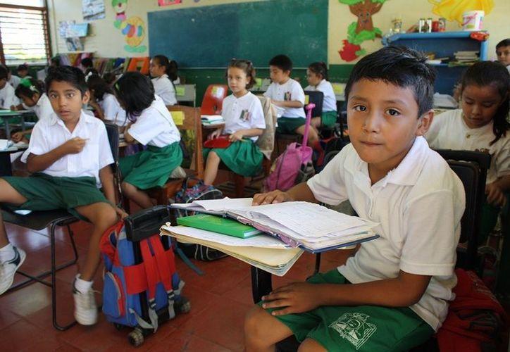 El Departamento de Educación Indígena visitará los planteles para evaluar la situación y hacer las modificaciones necesarias. (Juan Palma/SIPSE)
