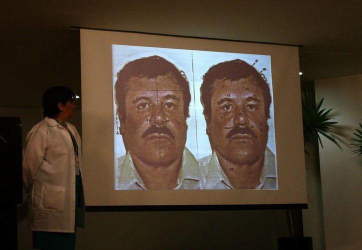 """El documental de Guillermo Galdós y Angus MacQueen sobre """"El Chapo"""" abarca hasta la detención del narcotraficante más buscado. (EFE/Archivo)"""