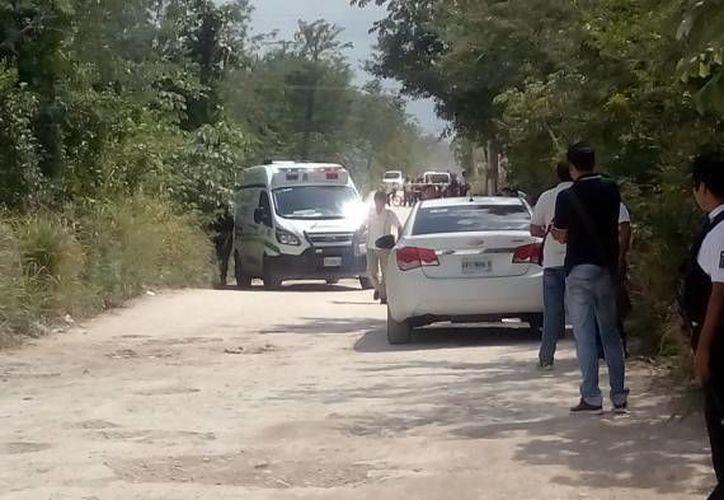 El cuerpo de la mujer fue hallado en un área verde de Cancún. (Redacción/SIPSE)