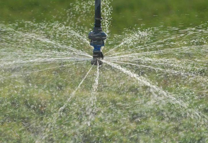 El agua utilizada por las personas necesita un tratamiento previo que permita su reincorporación a los ríos, lagos y mares. (Notimex(Contexto)