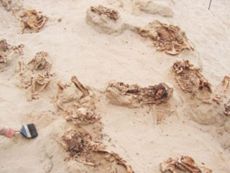 Handout photo provided by National Geographic shows more than a dozen bodies preserved in dry sand for more than 500 years. (AP)