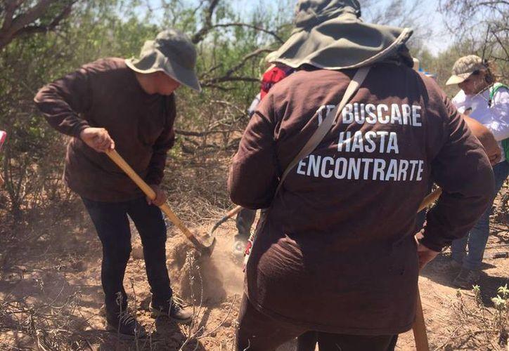 Con palas y picos, Las Rastreadoras salen al menos dos veces por semana a buscar en fosas los restos de sus familiares. (facebook.com/mirnanereida)