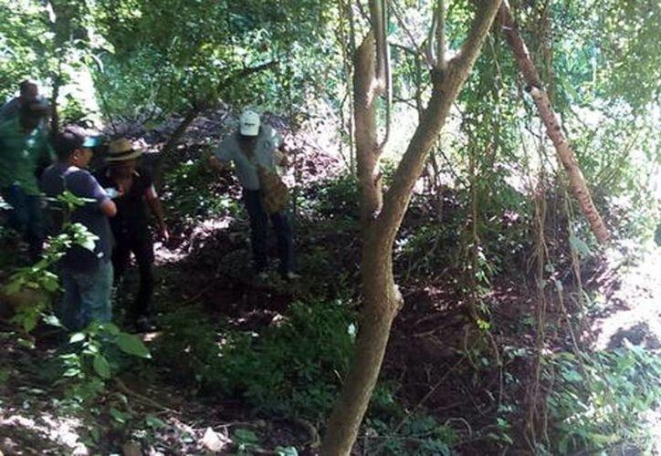 La autoridad presume que los cuerpos son de cuatro hombres reportados como desaparecidos el 10 de agosto. (Javier Trujillo/Milenio)