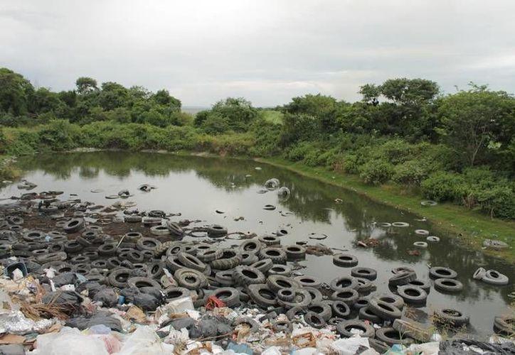 El basurero local es un tiradero al airé libre y no cuentan con las adecuaciones necesarias para funcionar como relleno sanitario. (Edgardo Rodríguez/SIPSE)