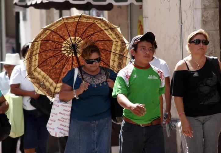 Para mañana domingo, los valores mínimos oscilarían entre los 14.0 y 18.0 grados Celsius en Yucatán. (SIPSE)