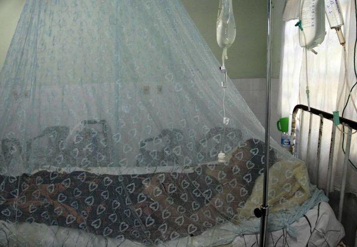 Un paciente con dengue es asistido en un centro de salud de Asunción, Paraguay. (Archivo/EFE)