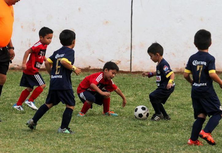 En las categorías infantiles los niños mostraron buen nivel de juego. (Jorge Acosta/SIPSE)