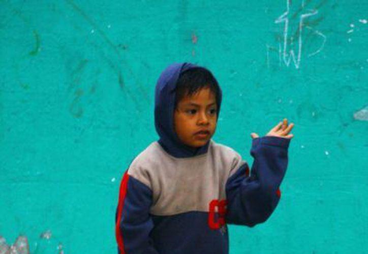 Anuncian como apoyo adicional en esta época de frío, además de los cobertores que ya se entregaron a las personas adultas mayores y con discapacidad, chamarras para los estudiantes de las primarias públicas de Yucatán. (Milenio Novedades)