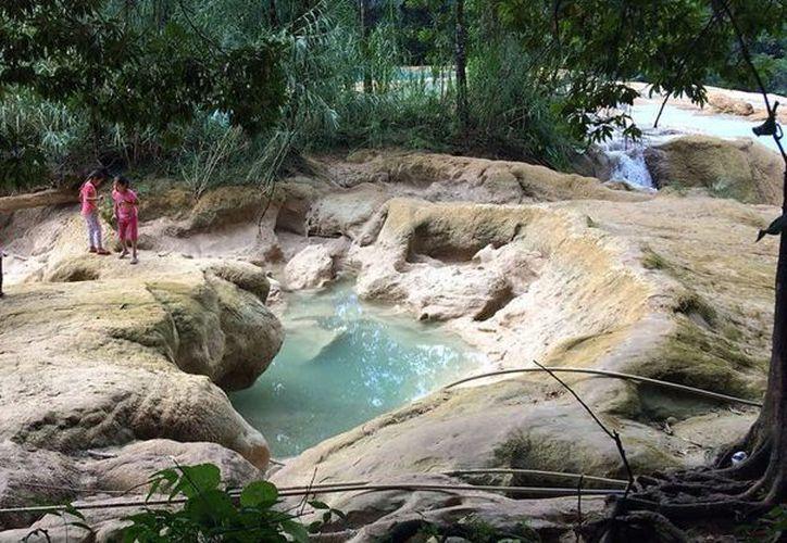Las Cascadas de Agua Azul fueron declaradas, desde 1980, Reserva Natural de la Biósfera en el mundo. (Foto: Animal Político)