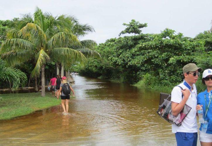 Comunidades del municipio registraron inundaciones en este período de lluvias. (Rossy López/SIPSE)