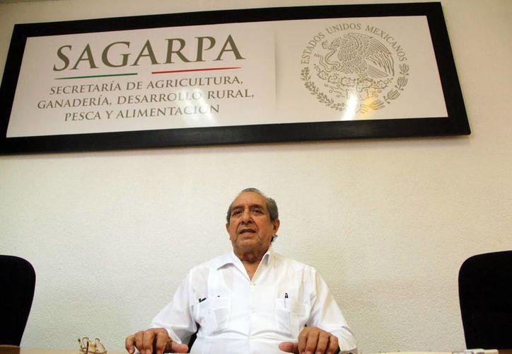 """""""La tecnificación del campo local se acerca rápidamente a la meta"""", afirmó el delegado estatal de la Sagarpa, Manuel Escoffié Pompeyo. (Milenio Novedades)"""