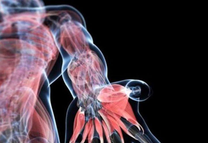 El hallazgo de este 'nuevo órgano' podría contribuir con tratamientos más efectivos contra el cáncer. (Foto: Contexto/Internet).