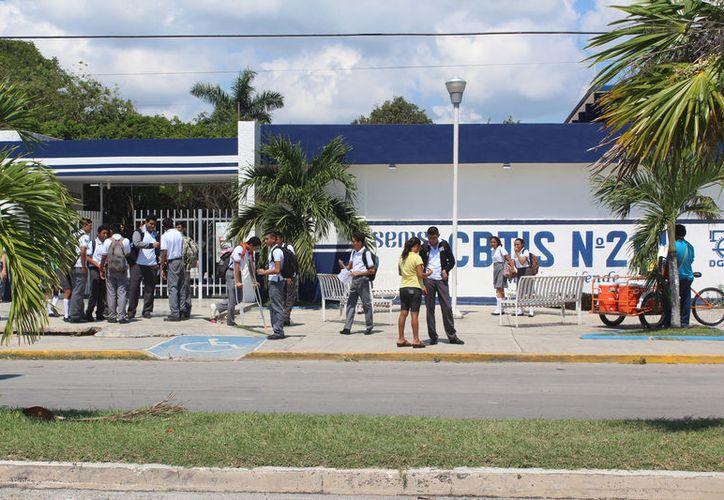 La Universidad de Quintana Roo interpuso una denuncia penal en contra de quién o quienes resulten responsables del delito de despojo. (Foto: Joel Zamora/SIPSE)