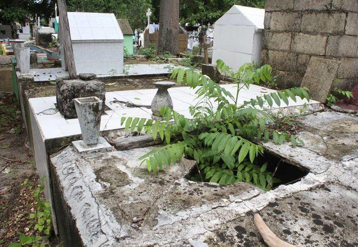 También se reportan casos de vandalismo en el campo santo. (Sergio Orozco/SIPSE)