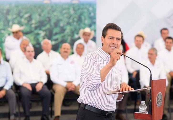 El presidente Enrique Peña Nieto informó sobre el proyecto que el gobierno federal tiene para impulsar el crecimiento del sector agropecuario, esto al encabezar la inauguración del 77 Congreso del Ejecutivo Nacional de la CNC. (presidencia.gob.mx)