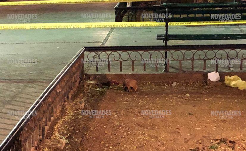 El cráneo fue reportado por una persona que cruzaba por el parque.