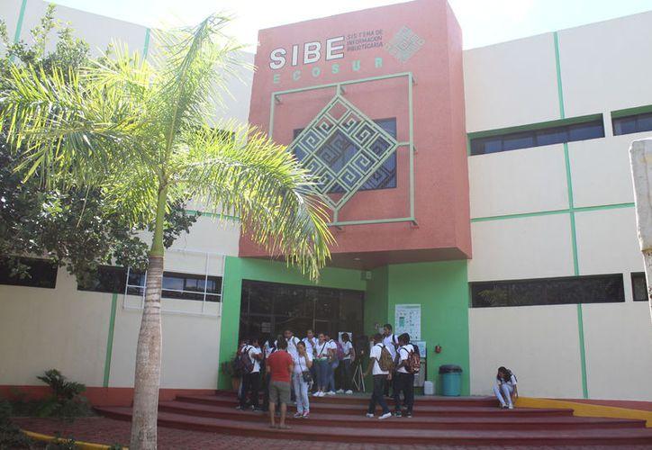 Próximamente los investigadores de esta ciudad y Campeche se reunirán para analizar el proyecto. (Joel Zamora)