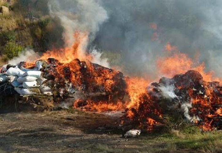 También se le pidió a la Semar informar sobre la contaminación que produce el incinerar la droga. (Milenio)