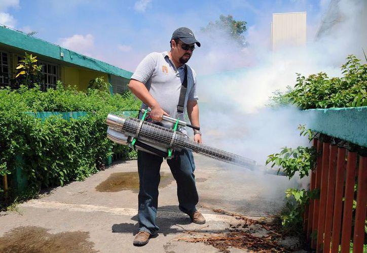 Personal de Sesa previene algún posible brote de dengue en la isla. (Cortesía/SIPSE)