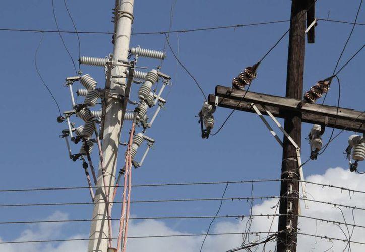 Personal de la CFE revisa línea por línea en las zonas afectadas. (Tomás Álvarez/SIPSE)