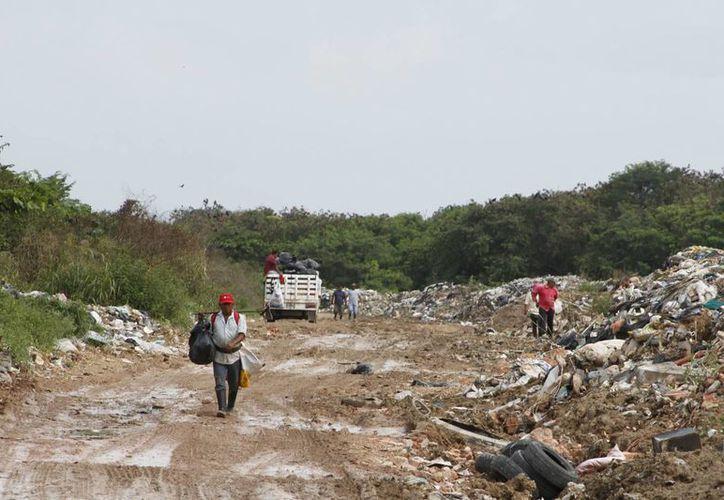 El pasado martes los pepenadores suspendieron sus labores dos horas por las pésimas condiciones en que trabajan. (Harold Alcocer/SIPSE)